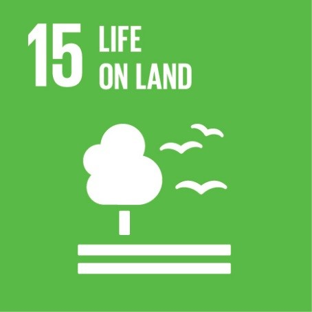 Ahead of the Sustainable Development Goals – 3