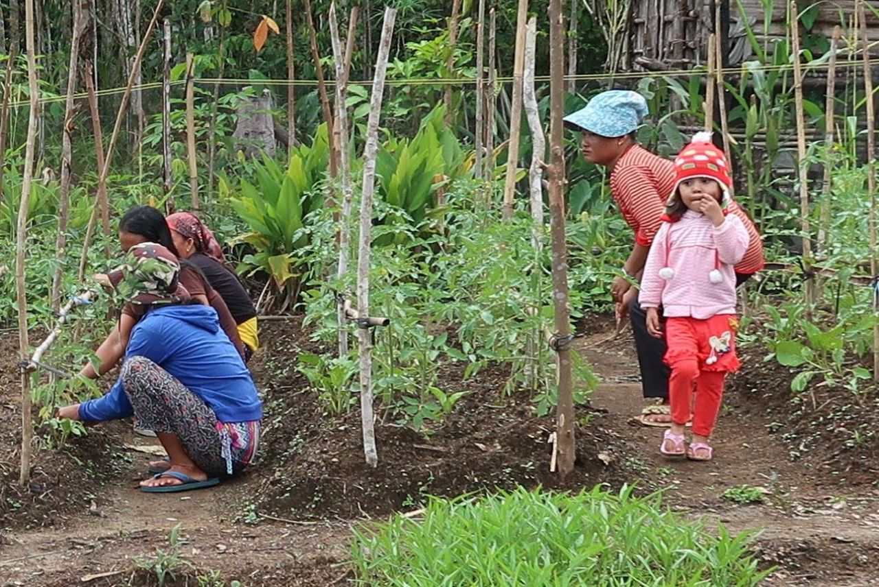 Food security and support for communities in times of a global pandemic
